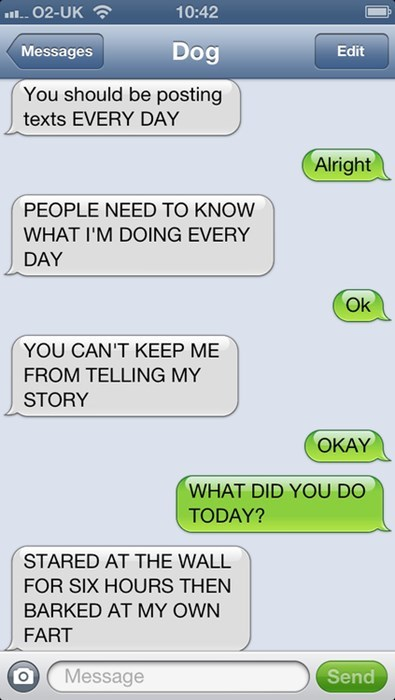 thrilling texts from dog funny - 7728241920