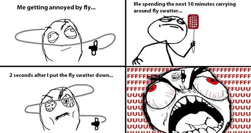 Like a Boss fly swatter fly flies