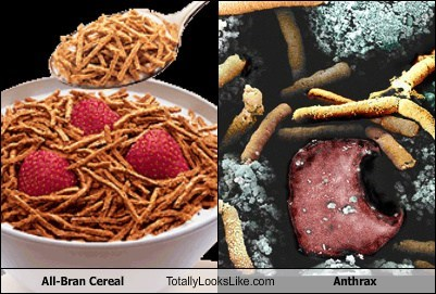 anthrax totally looks like funny cereal - 7728692992