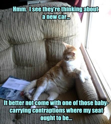 car seat suspicious funny