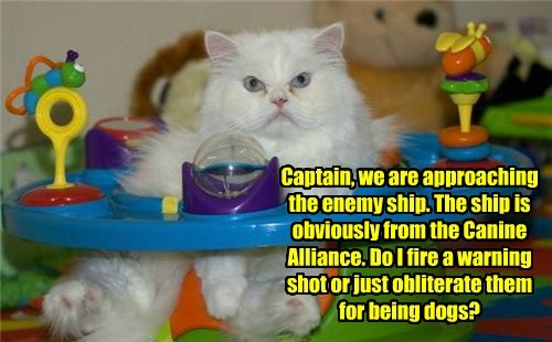 toy,captain,funny