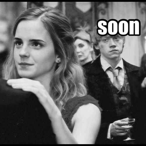 Harry Potter SOON Ron Weasley funny - 7729534464