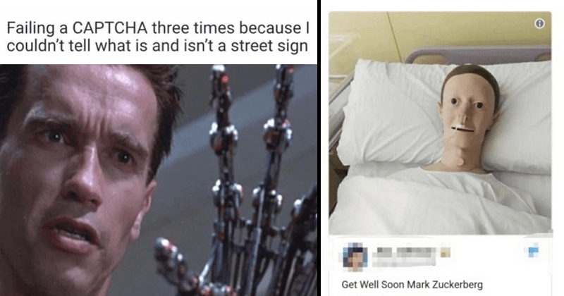Funny memes about mark zuckerberg, gaming, wrestling, lizard people, texting.