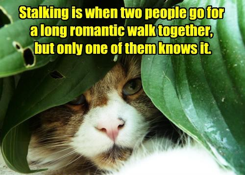 Stalking is when two people go for a long romantic walk together, but only one of them knows it.