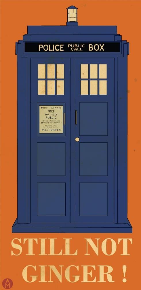 Fan Art doctor who gingers - 7730580224