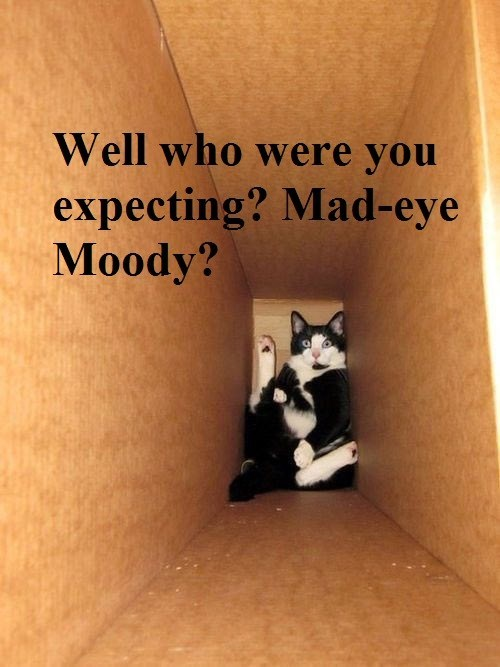 Harry Potter box mad-eye moody funny - 7730802432