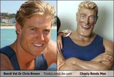 blondes,chesty bonds man,totally looks like,chris brown,funny