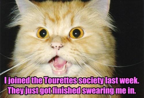 tourettes pun swearing funny - 7731990016