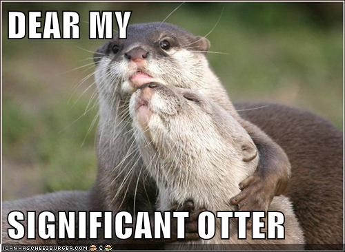otter significant other funny - 7732053504