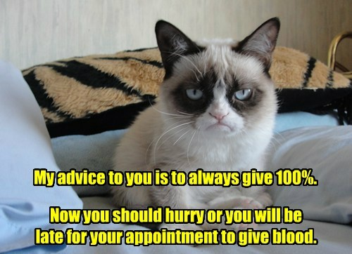 blood donation Grumpy Cat advice funny - 7732629248