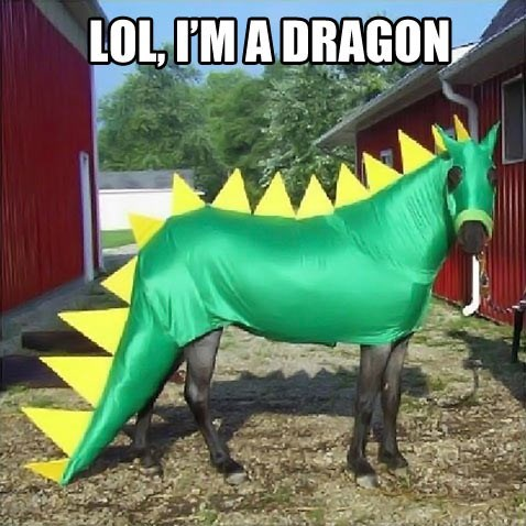 dragon,cosplay,horseplay,horse,poorly dressed,g rated