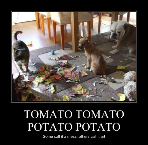 dogs tomato art mess Cats funny - 7732732928