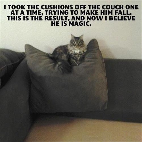 hover,couch,funny,magic