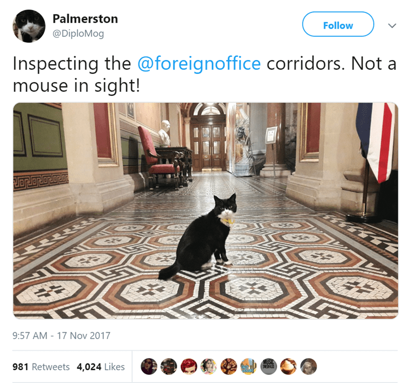 cat tweets foreign office UK funny tweets Cats diplomat - 7732997