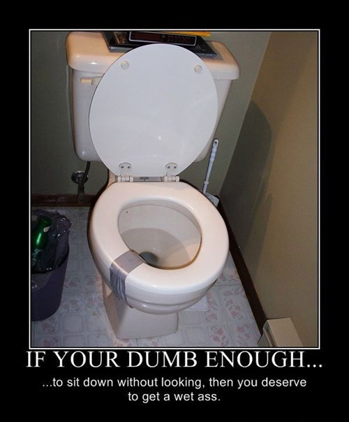 wtf toilet idiots sitting funny - 7732997120