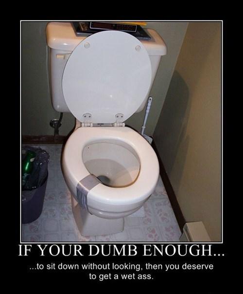 wtf toilet idiots sitting funny - 7732997120