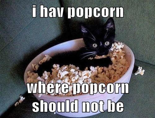 i hav popcorn  where popcorn should not be