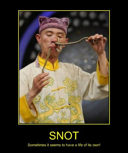 wtf,snot,eww,snakes,funny