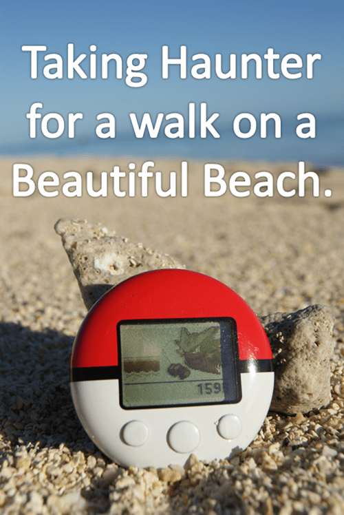 pokewalker,walks,haunter,the beach