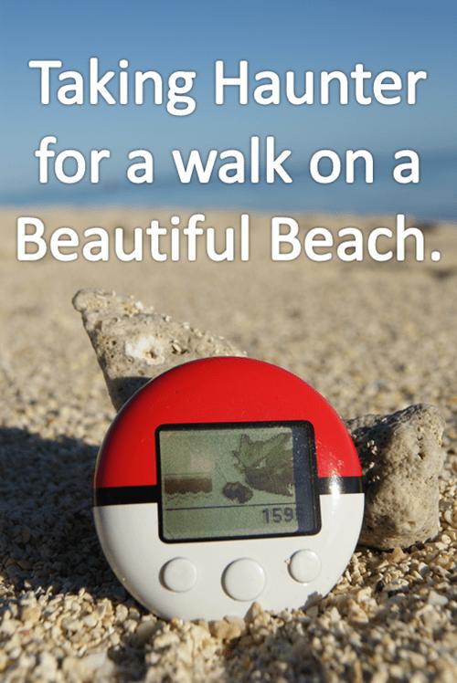 pokewalker walks haunter the beach - 7733345536