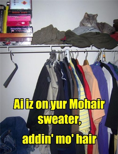 Ai iz on yur Mohair sweater, addin' mo' hair