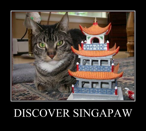funny singapore vacation - 7733486336