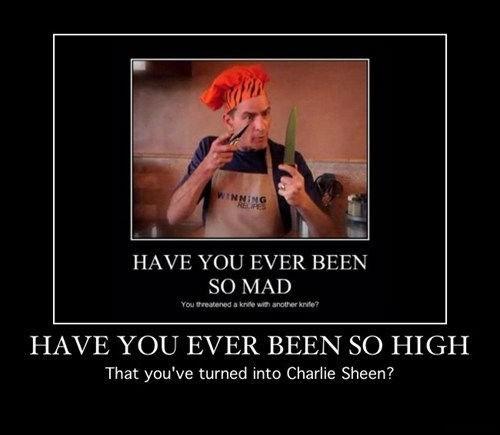 wtf drug stuff Charlie Sheen funny - 7733969920