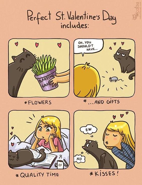 Cats web comics Valentines day - 7734277