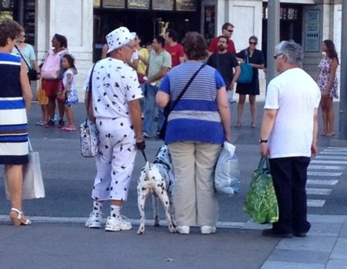 Dalmatian, the Ultimate Matching Accessory