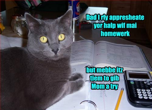 cavalry homework math funny - 7734531584