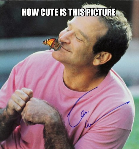 sweetheart,butterfly,butterfly kisses,robin williams