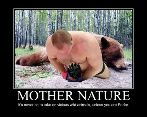 nature bear fedor funny wrestling - 7734884096