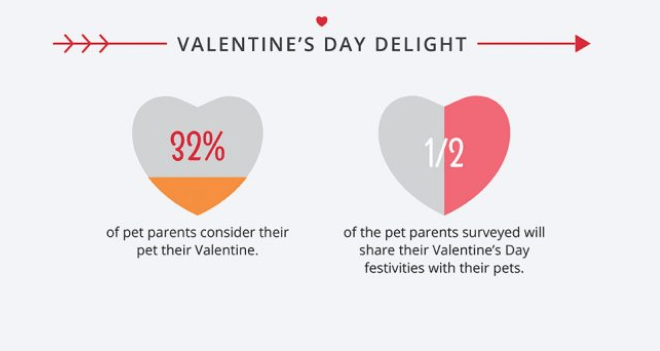 facts pets infographic Valentines day - 7735045