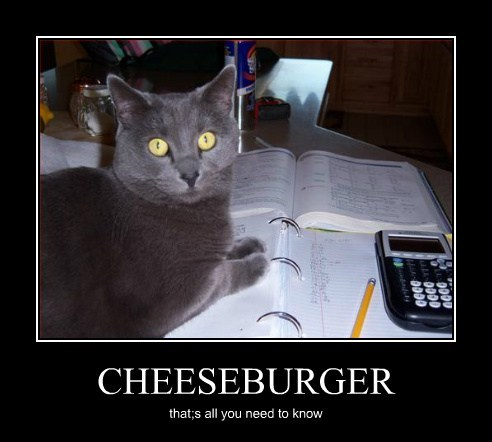 CHEESEBURGER that;s all you need to know
