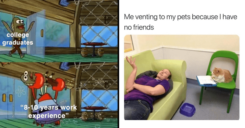Funny random memes, spongebob, spongebob memes, schooll, college, college memes, work.