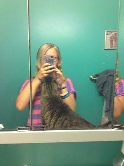 photobomb,selfie,Cats,funny