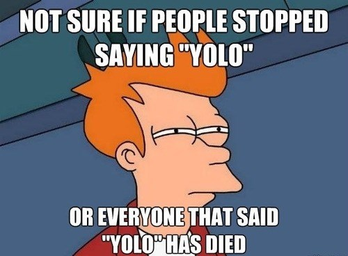 yolo,not sure if,fry meme,Memes