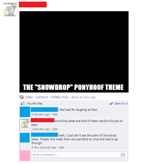facebook snowdrop