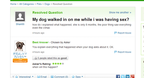 dogs yahoo answers - 7741238272