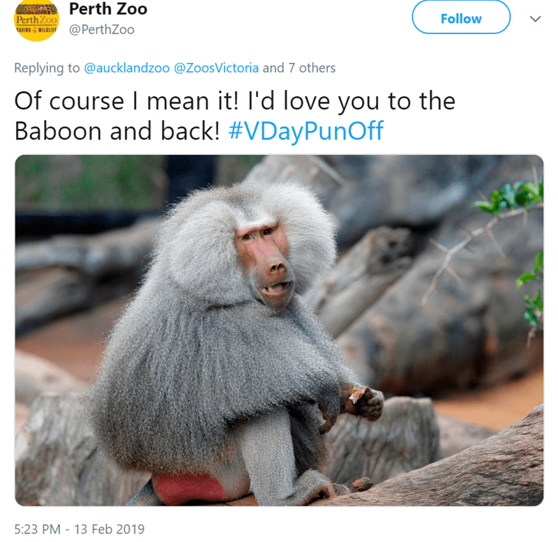zoo puns funny Valentines day - 7742469