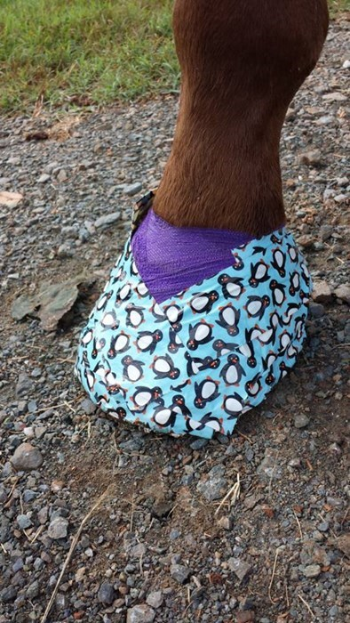 horses duct tape funny there I fixed it - 7742489600