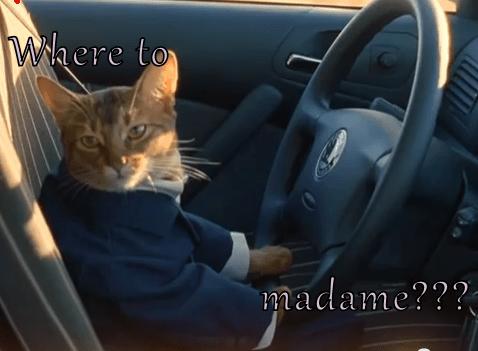 Where to  madame???