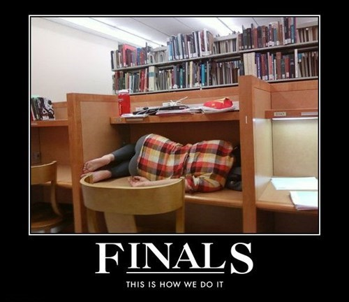 school wtf finals funny - 7742596096