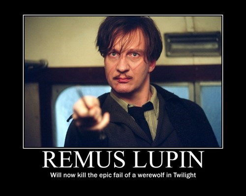 Harry Potter,remus lupin,twilight,funny