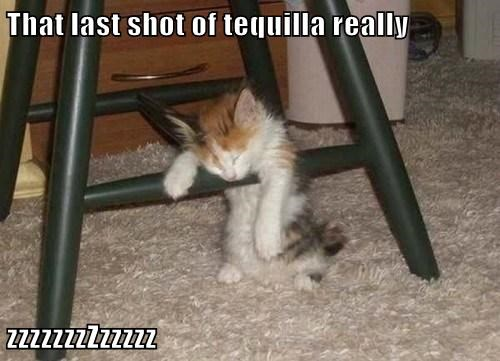 That last shot of tequilla really  zzzzzzzZzzzzz