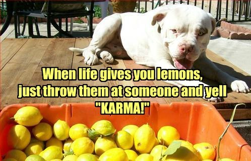 "When life gives you lemons, just throw them at someone and yell ""KARMA!"""