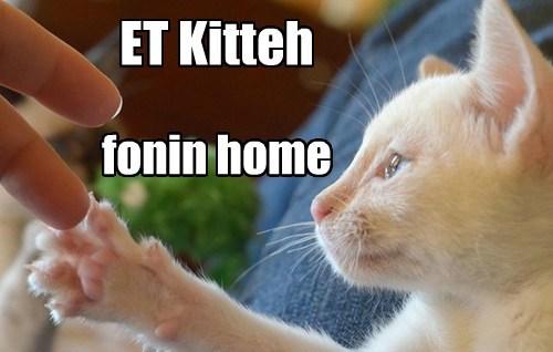 ET Kitteh fonin home