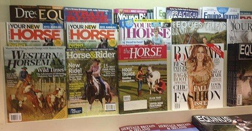 sarah jessica parker horses - 7746441728