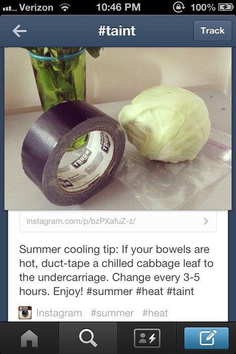 tumblr cabbage duct tape funny there I fixed it - 7748688896