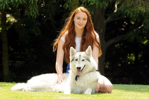 direwolves sansa stark Game of Thrones IRL celeb - 7749161984